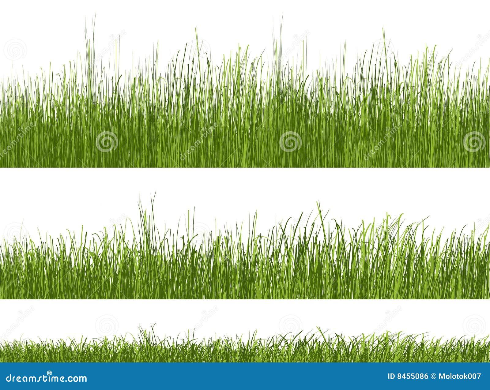 White för modell för bakgrundsgräsgreen