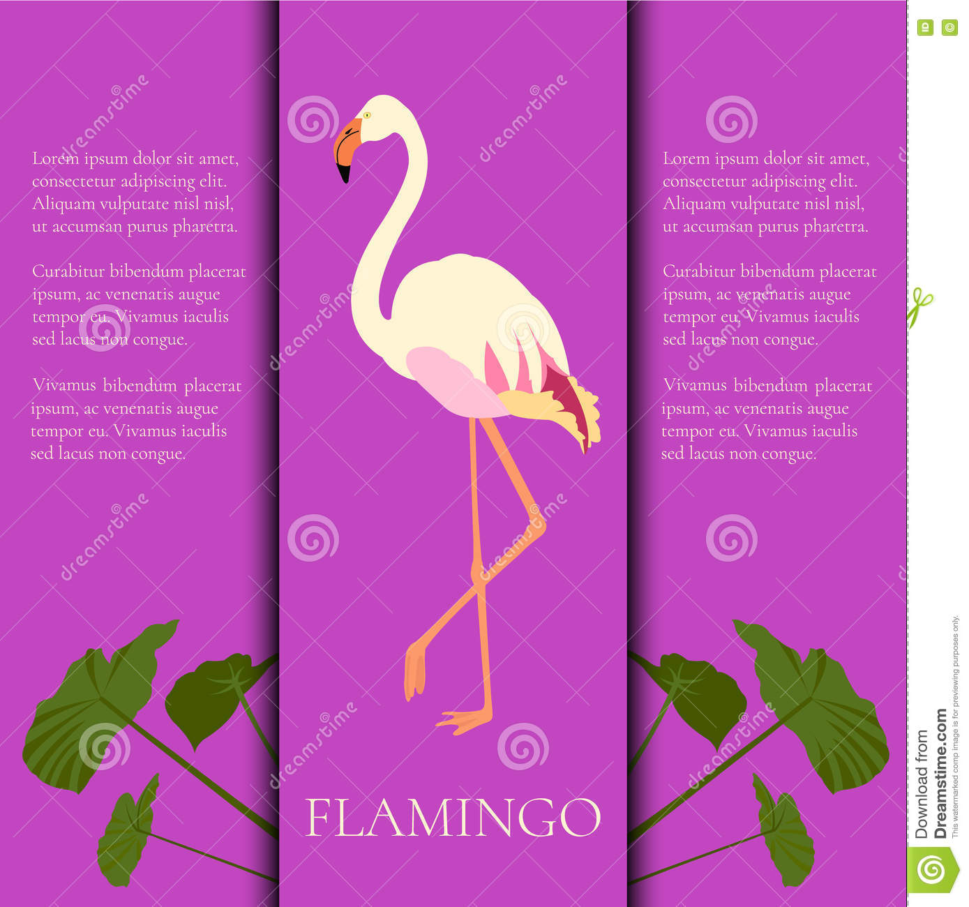 Flamingo banner stock photography for Flamingo beak template