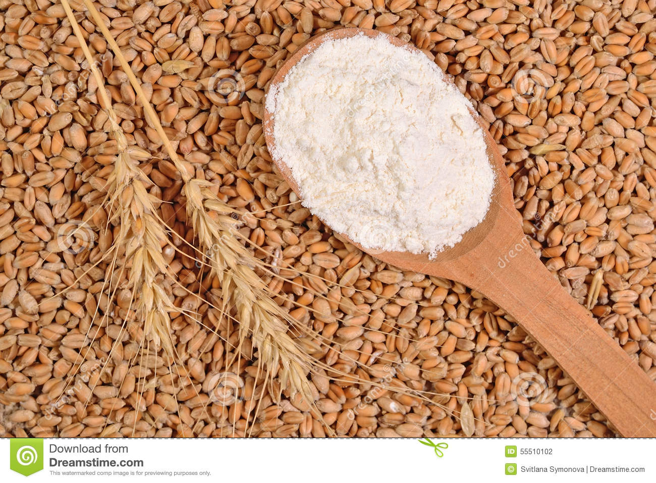 white flour in a wooden spoon and ears of wheat on a wheat grain stock photo image 55510102. Black Bedroom Furniture Sets. Home Design Ideas