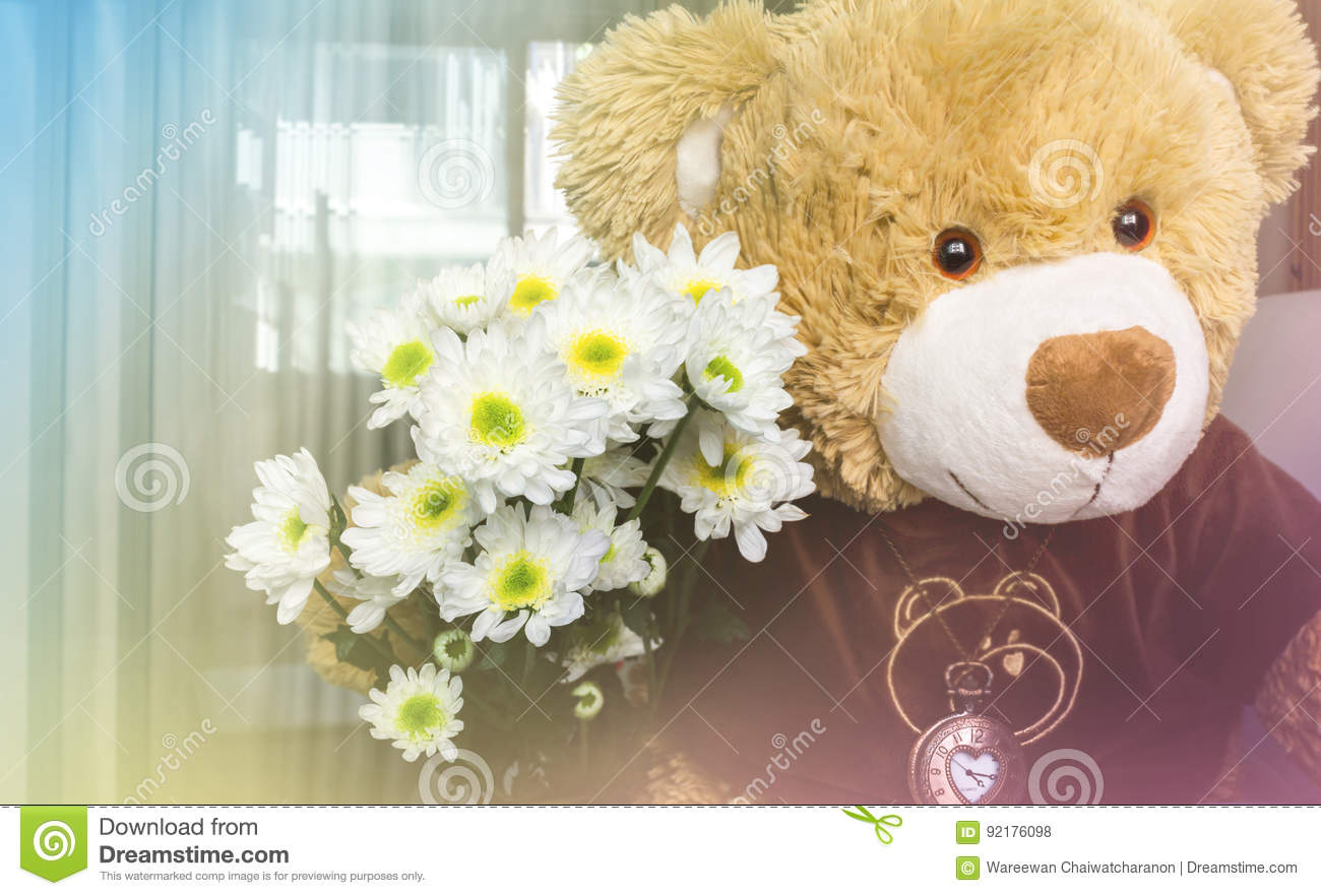 White Flower Bouquet With Cute Bear Doll Gift Background Stock Photo ...