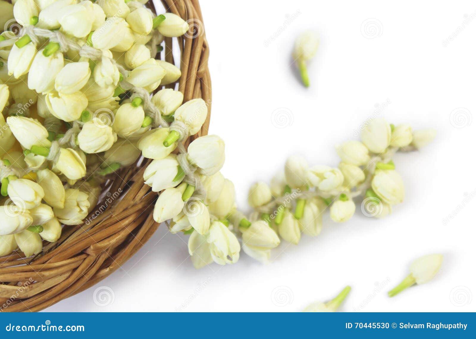Flower Basket Temple Stock Images - Download 661 Photos