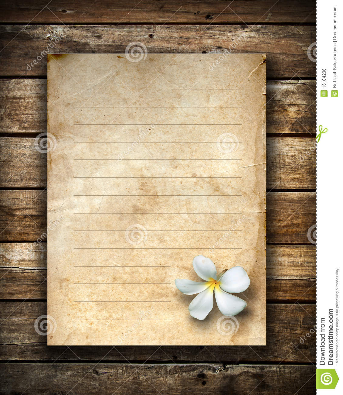 White Flower And Old Grunge Letter Paper Royalty Free