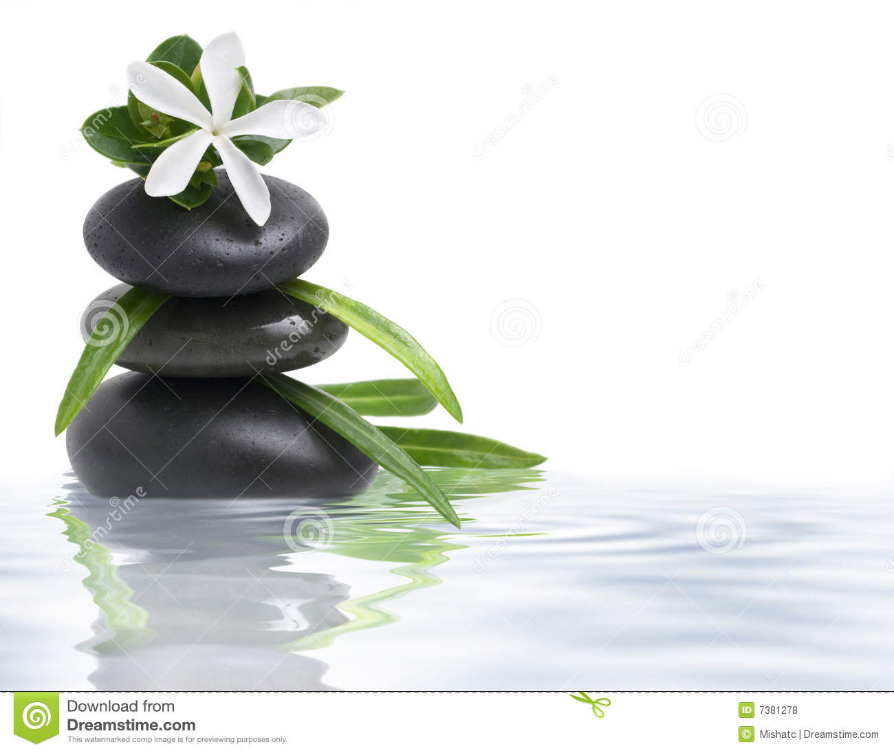 White flower and spa stones in water