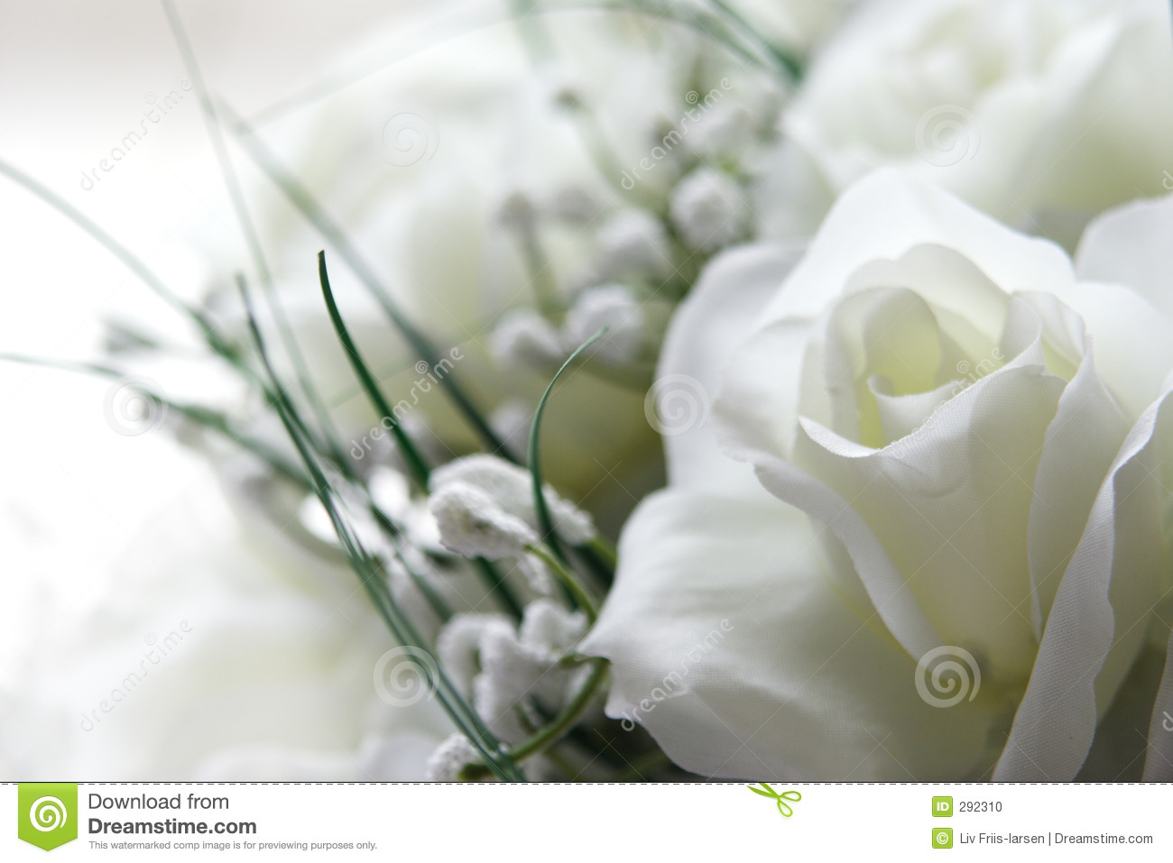 White Flowers Stock Photo Image Of Soft Feminine Romantic 292310