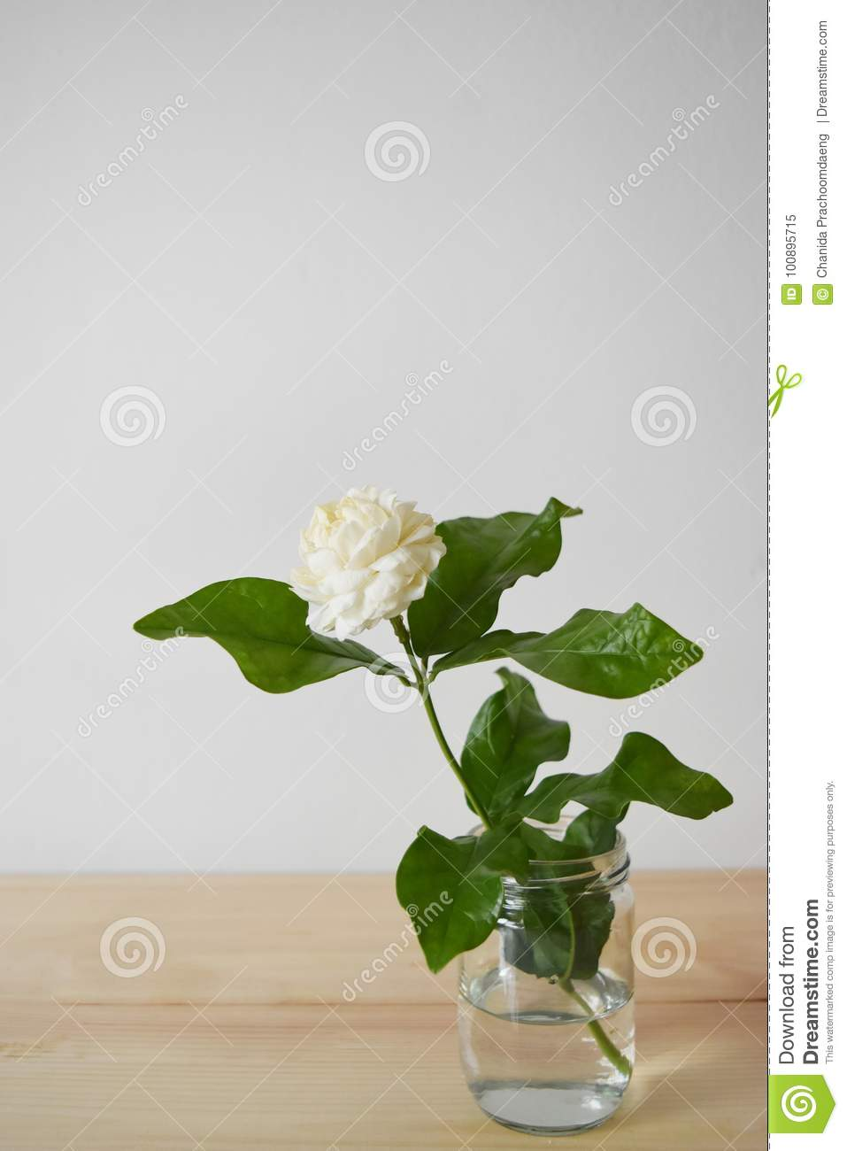White Flowers In A Glass Vase On A Brown Wood Table Jasminum
