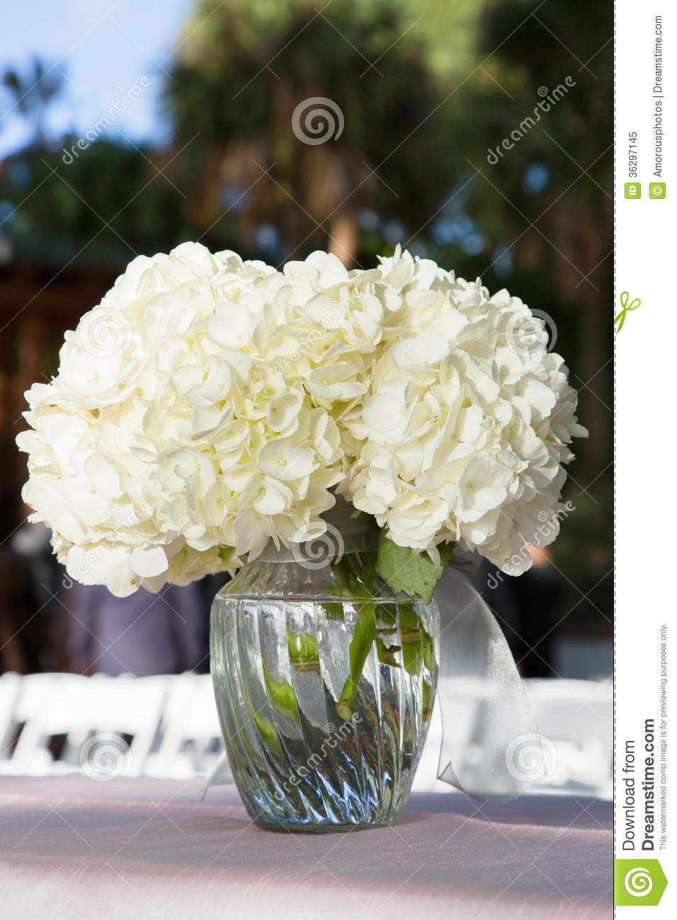 White Flowers In Glass Vase Royalty Free Stock Photo