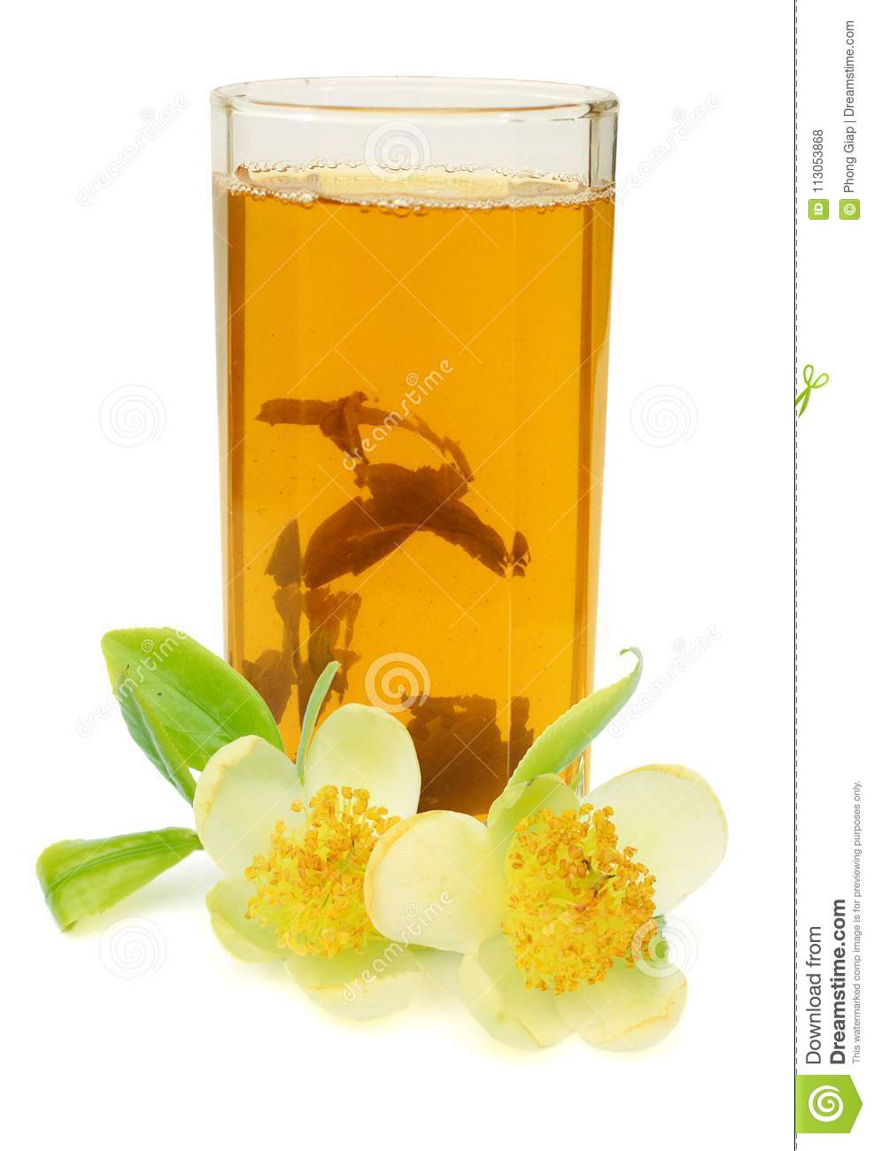 White Flowers Of Jasmine And Tea On The White Background Stock