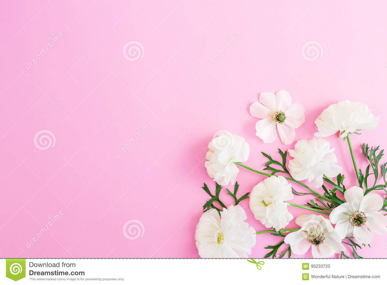 White flowers on pink background floral pattern flat lay top view download comp mightylinksfo