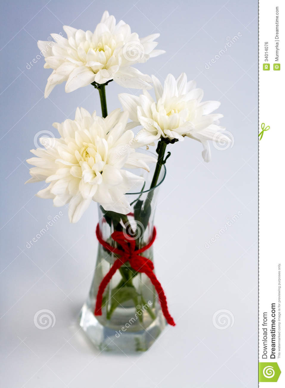 White Flowers In A Small Vase With A Red Bow Stock Photo
