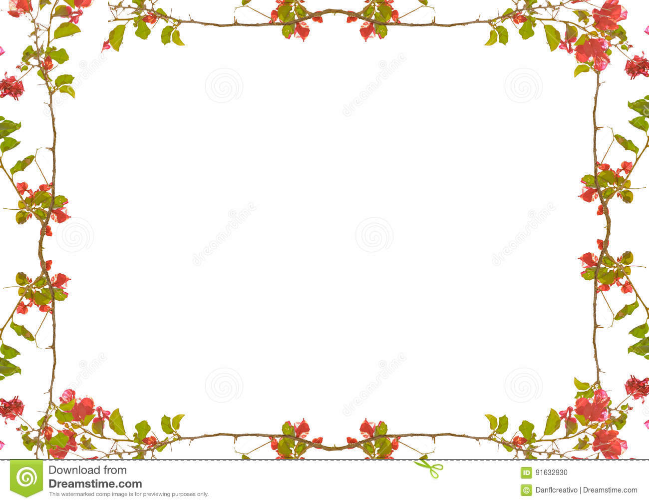 White frame with decorated floral borders stock photo for Garden border design