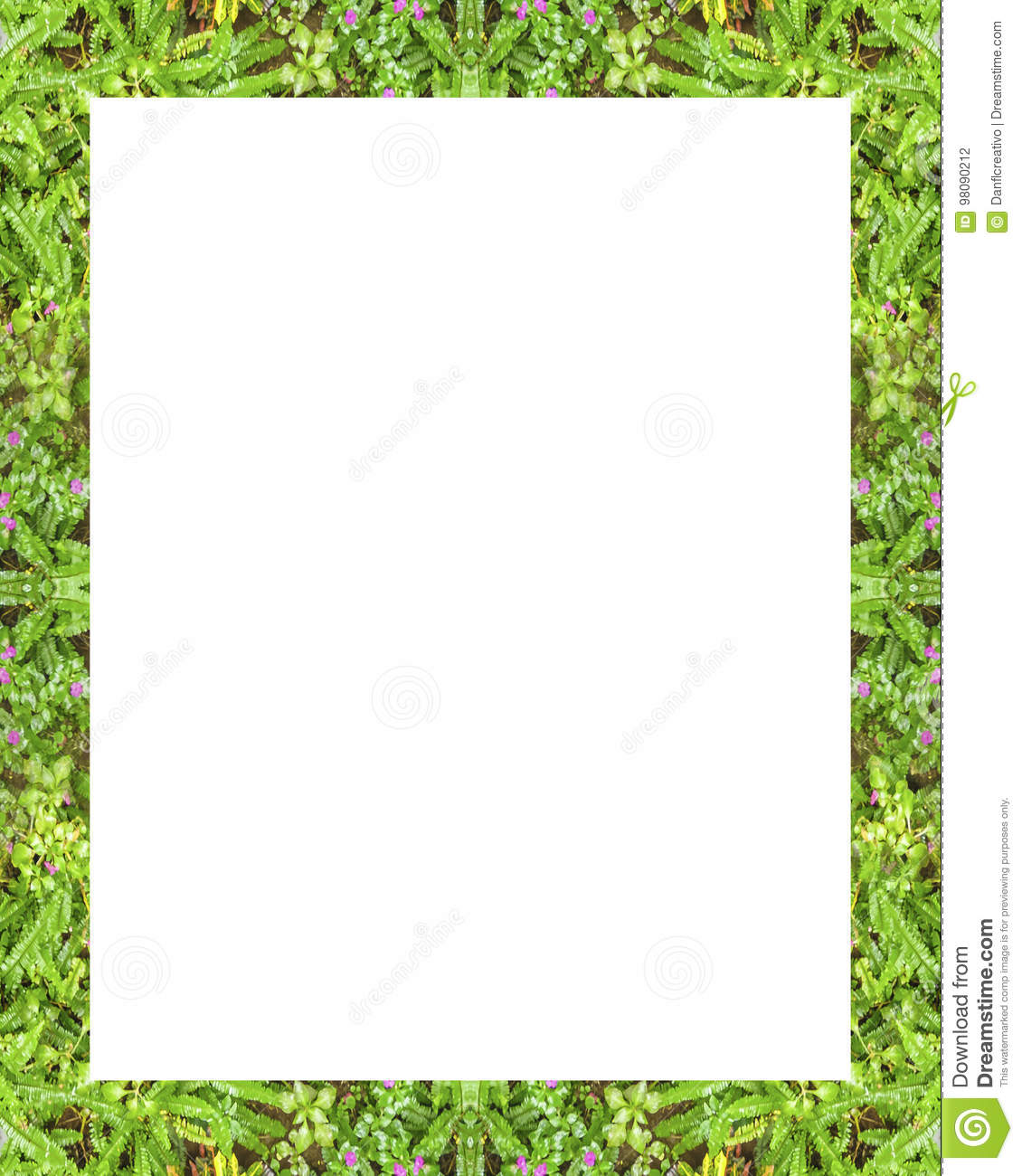 white frame with nature borders stock photo image of leaves stationary 98090212 https www dreamstime com stock photo white frame nature borders background decorated design image98090212