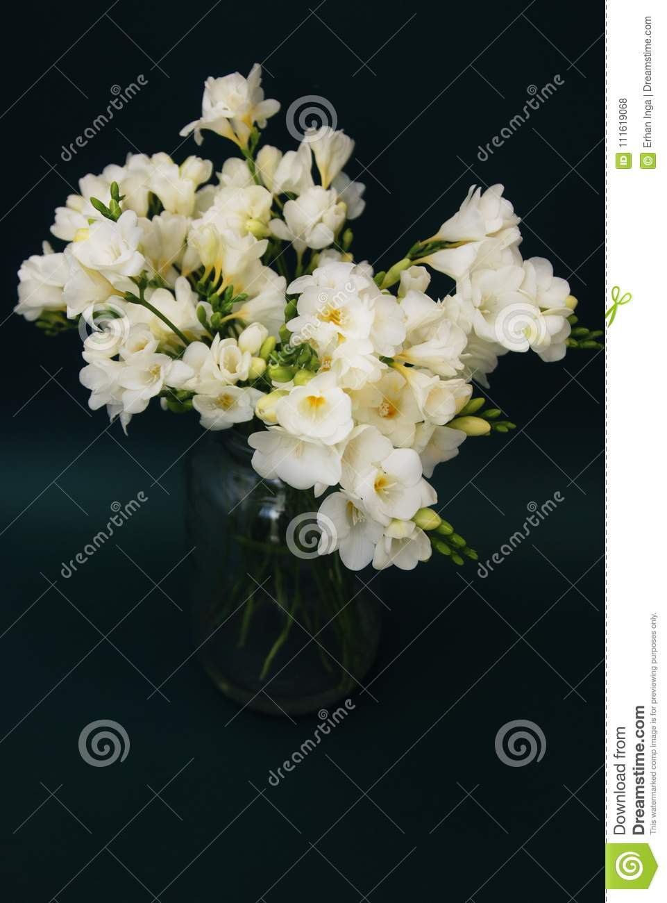 White Freesia Bouquet of Flowers in Glass Vase on Black Background. close up.