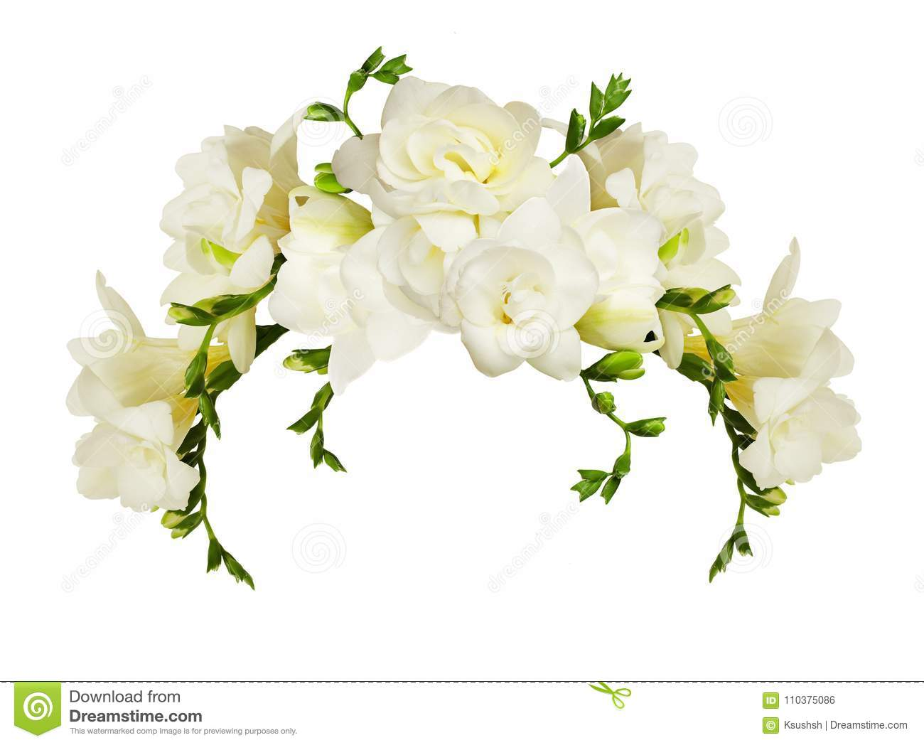 White Freesia Flowers In A Beautiful Arch Arrangment Stock Photo