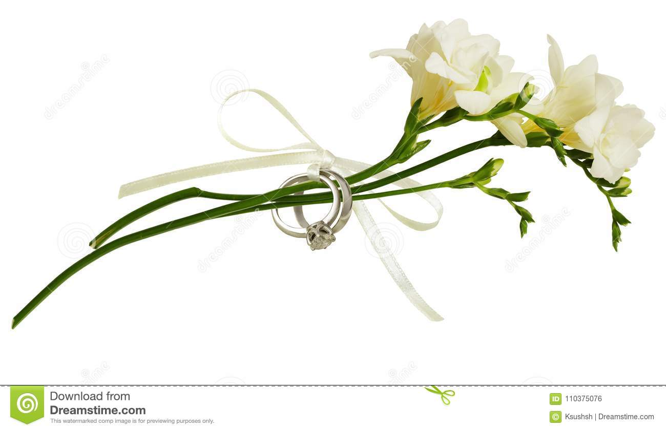 White Freesia Flowers And Two Golden Rings Tied With Silk Ribbon