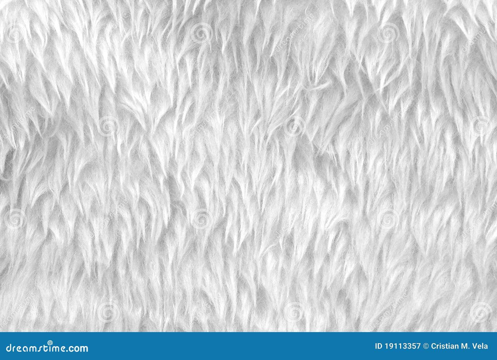 White Fur Stock Image Image Of Short Fake Clean