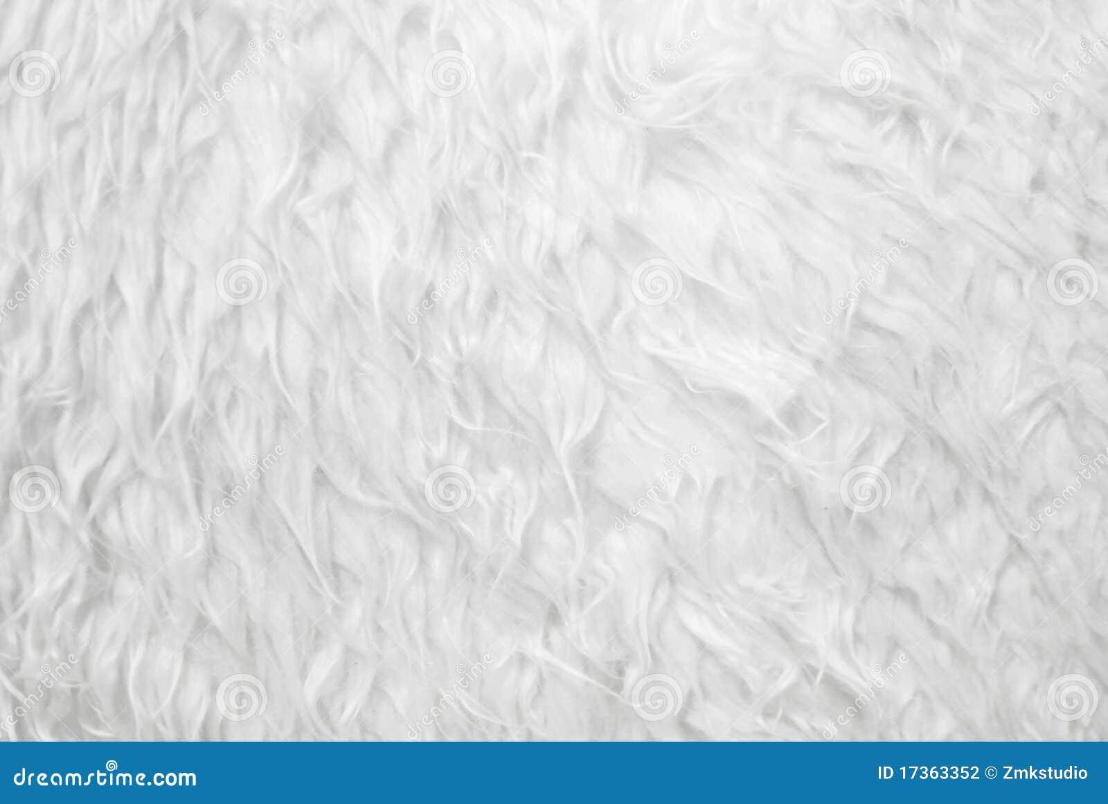 White Fur Texture Closeup Stock Photography Image 17363352