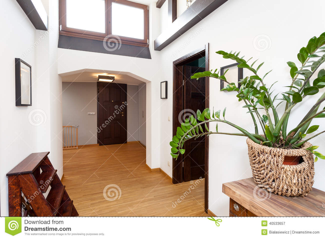 White hall in modern house stock photo image 40533657 for Modern house hall