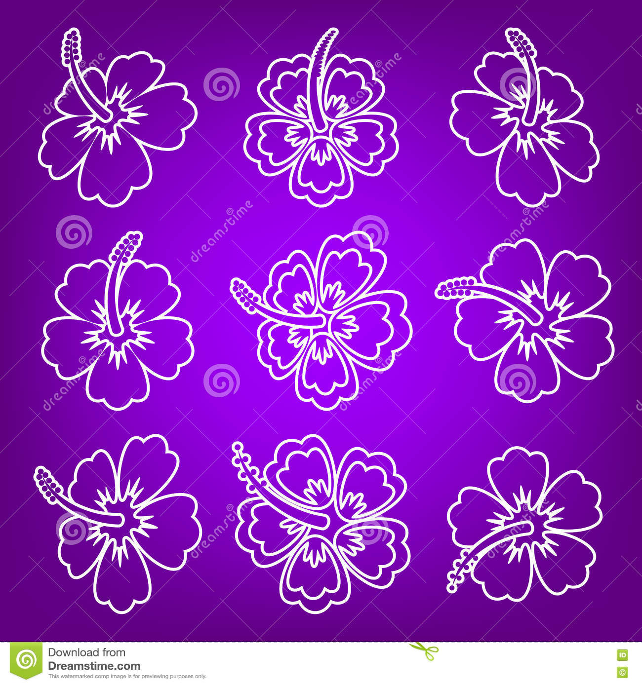 White Hibiscus Flower Outline Icons Stock Vector Illustration Of