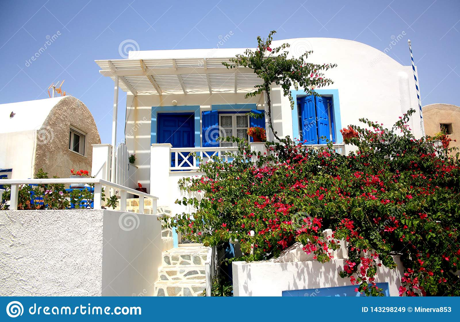 A white house with blue painted doors and window frames and bush with flowers on the front scene in Santorini Island