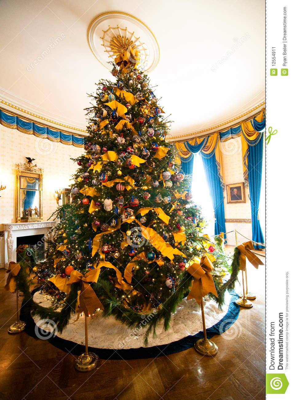 White House Christmas Tree Stock Image Image Of Gold