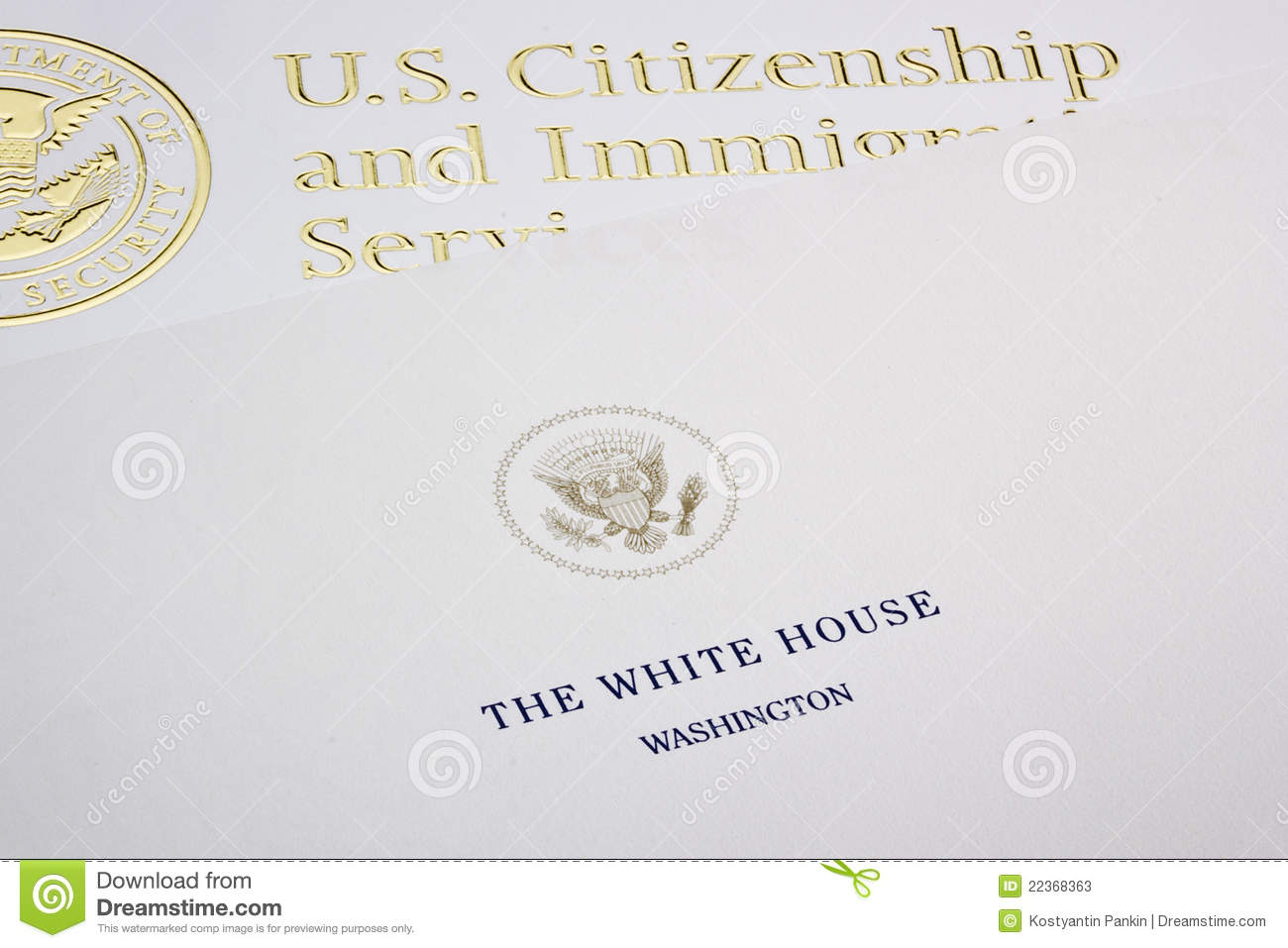 Position paper, Department of Homeland Security Essay Sample