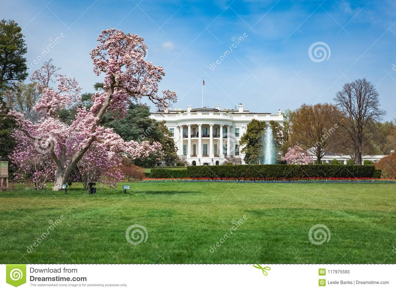 White House In Spring Stock Image Image Of Cherry Springtime