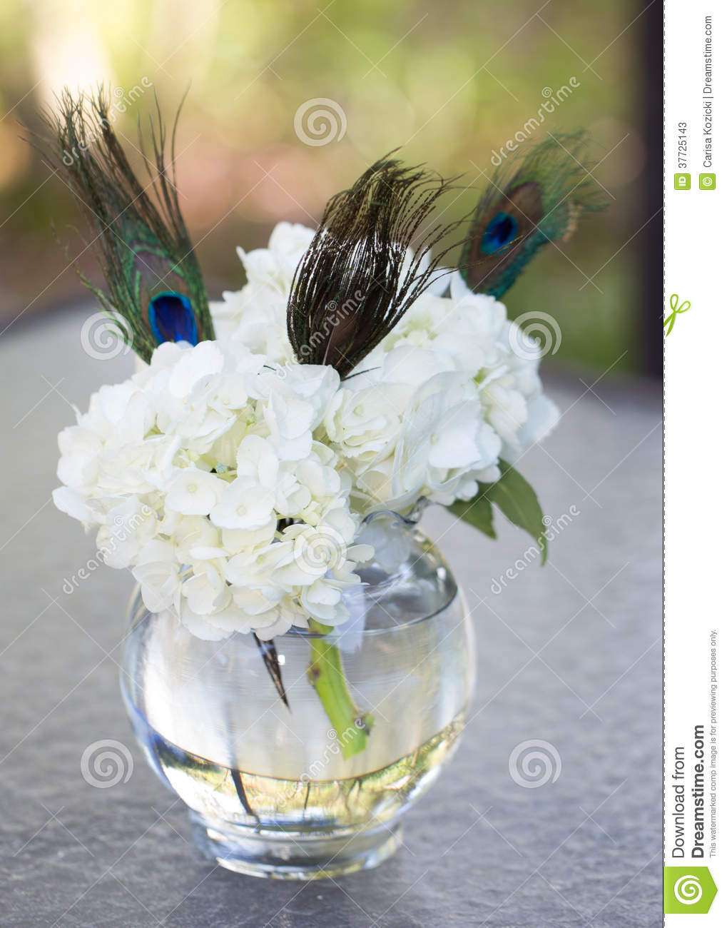 White hyndrangea and peacock feather centerpiece stock