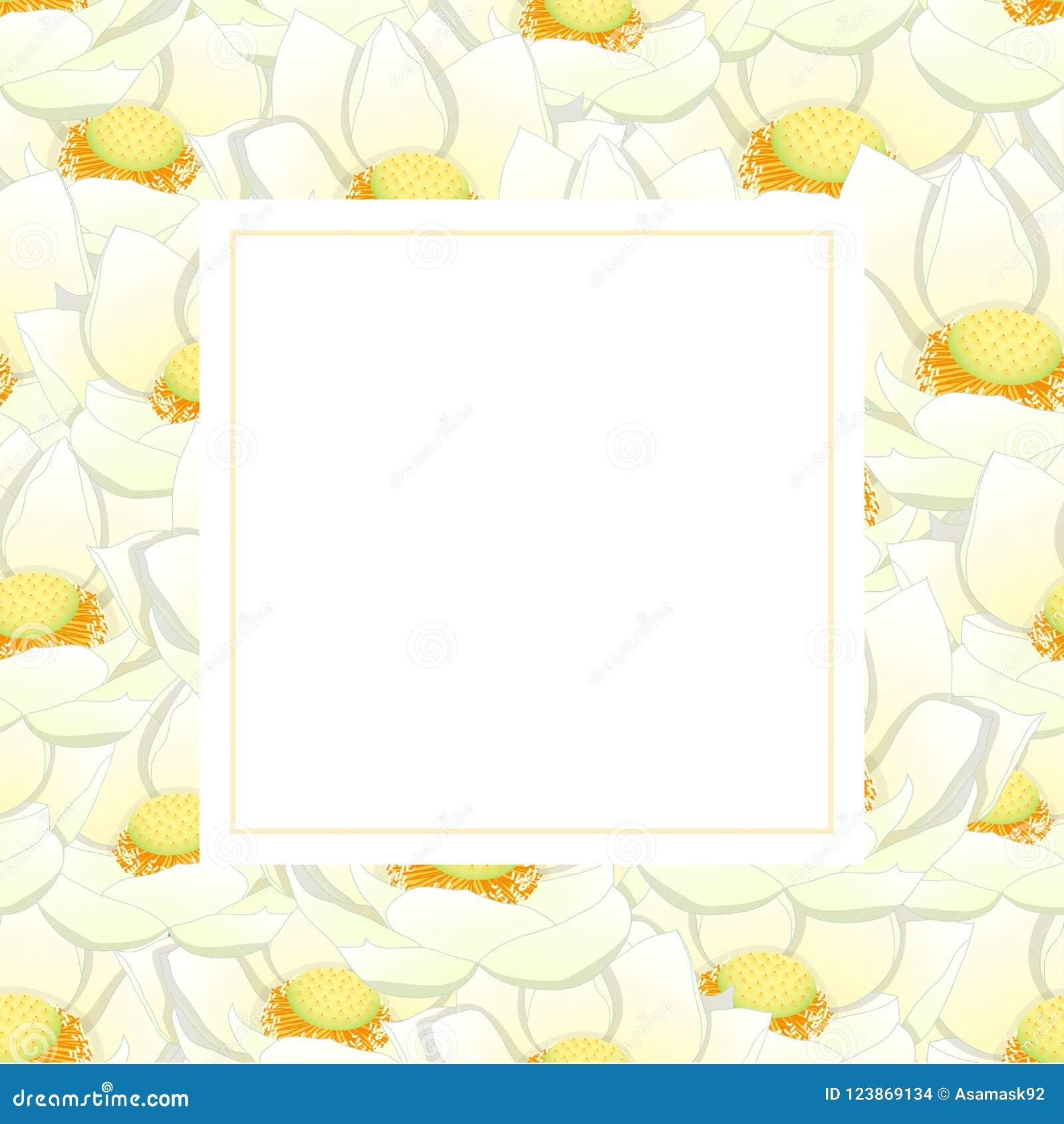 White Indian Lotus Banner Card Border Nelumbo Nuciferasacred Lotus