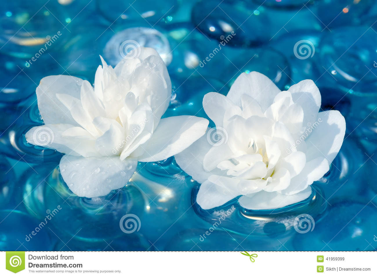 White jasmine flowers on water stock image image 41959399 for Floating flowers in water