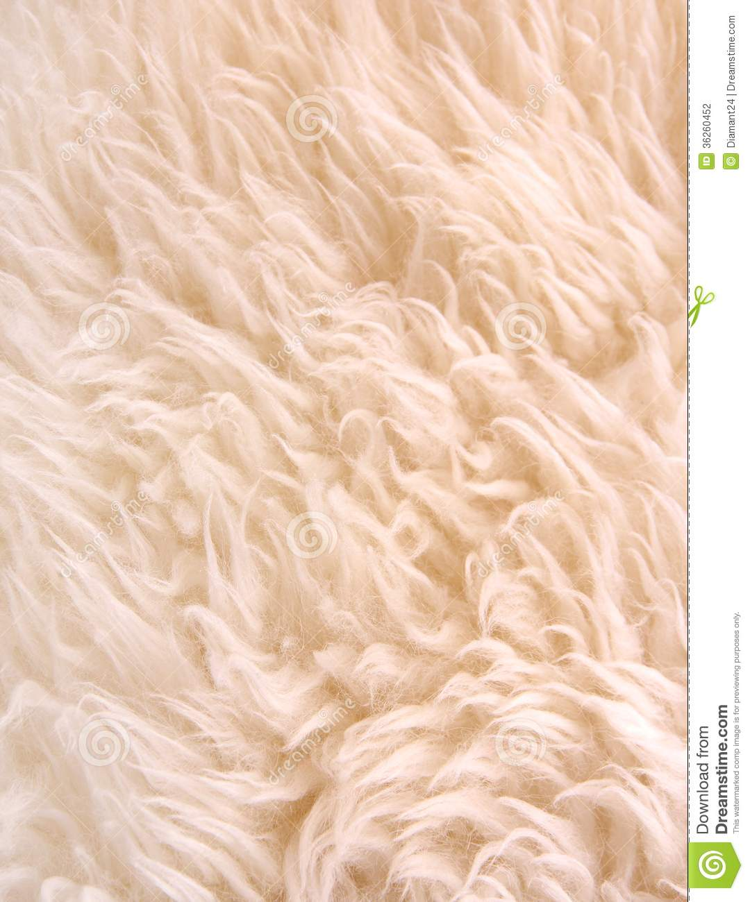 White Lambskin As Background Stock Photography Image