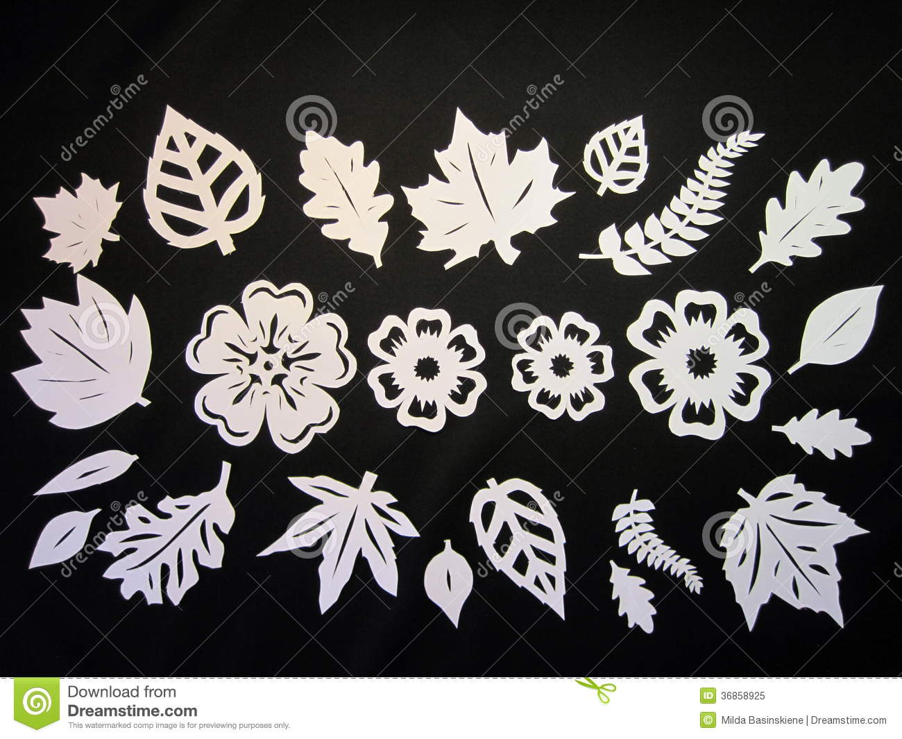 White leaves anf flowers paper cutting stock image image of idea white leaves anf flowers paper cutting mightylinksfo