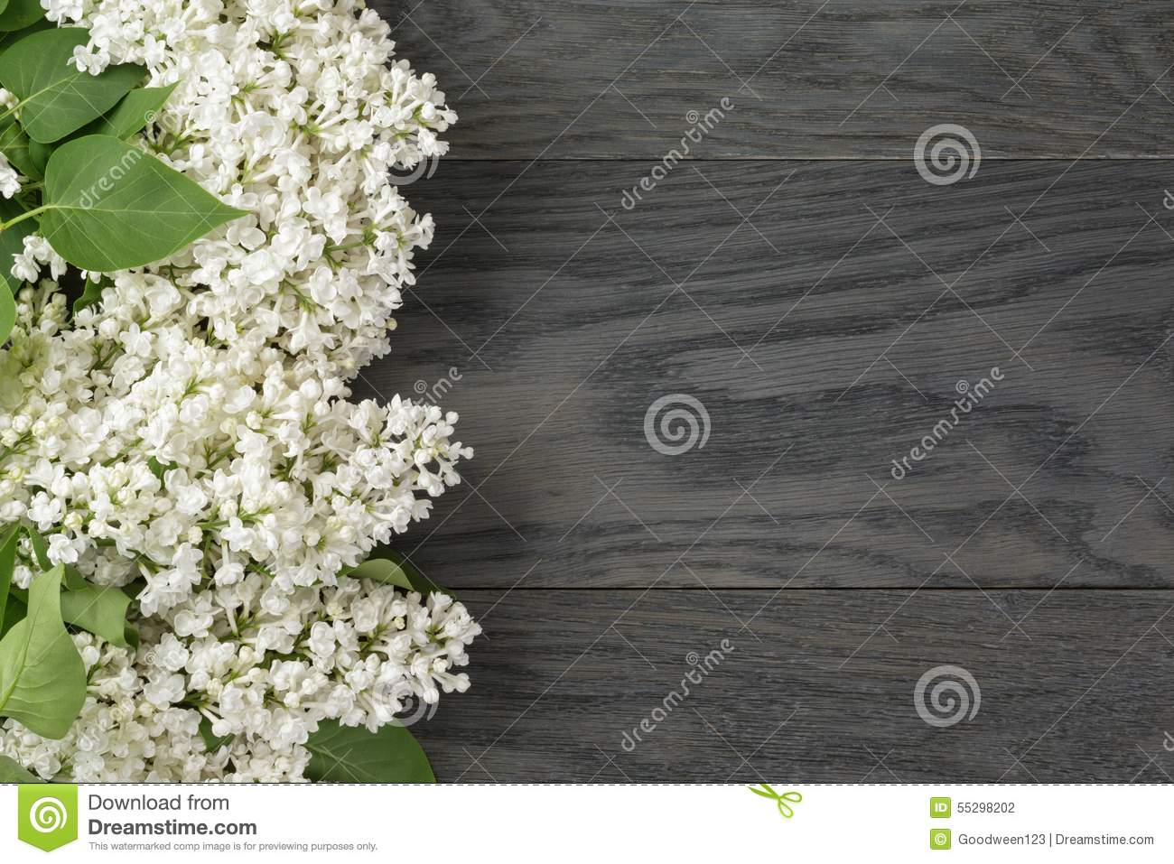 White Lilac Flower On Old Oak Table Top View With Stock Photo Image