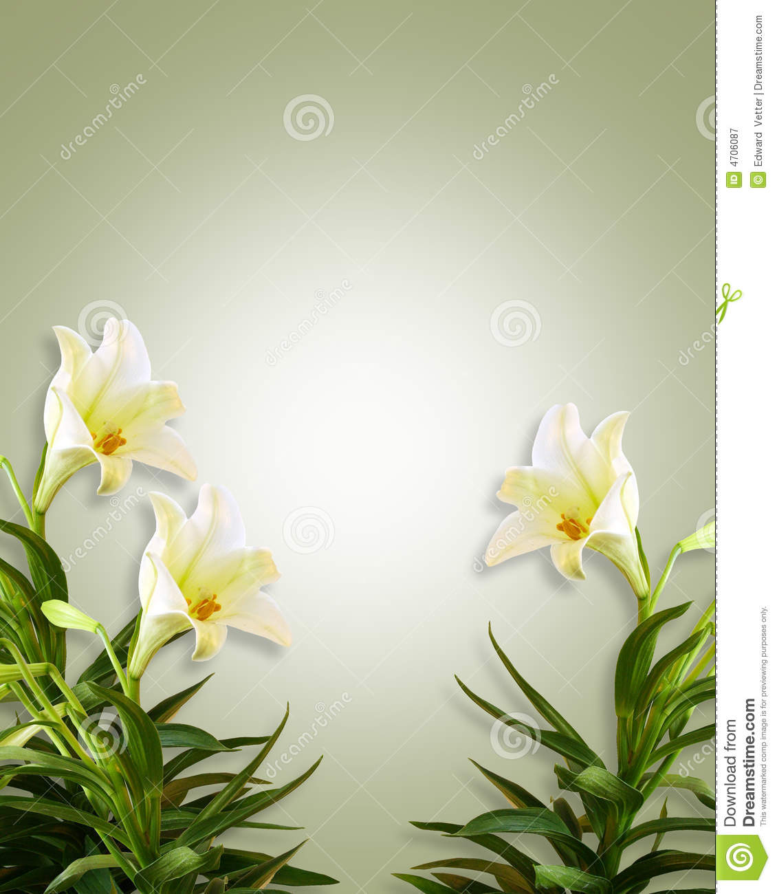 White Lilies Floral Easter Background Royalty Free Stock Photography Image: 4706087