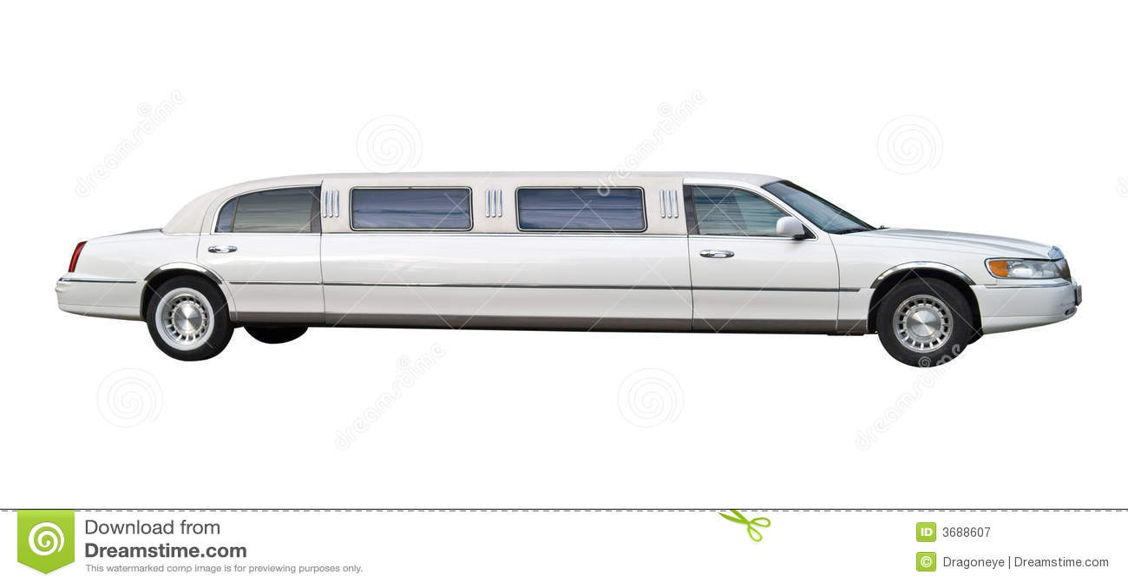 Limousine business plan