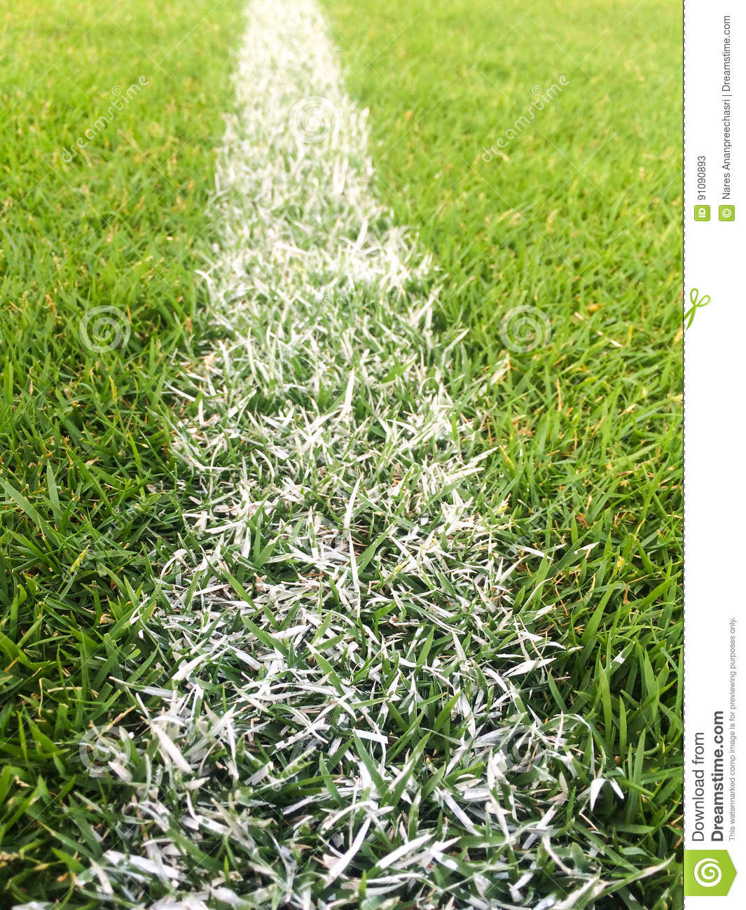 green grass soccer field. Download White Line On Green Grass At Soccer Pitch Or Football Field Stock  Image - Green Grass Soccer Field S