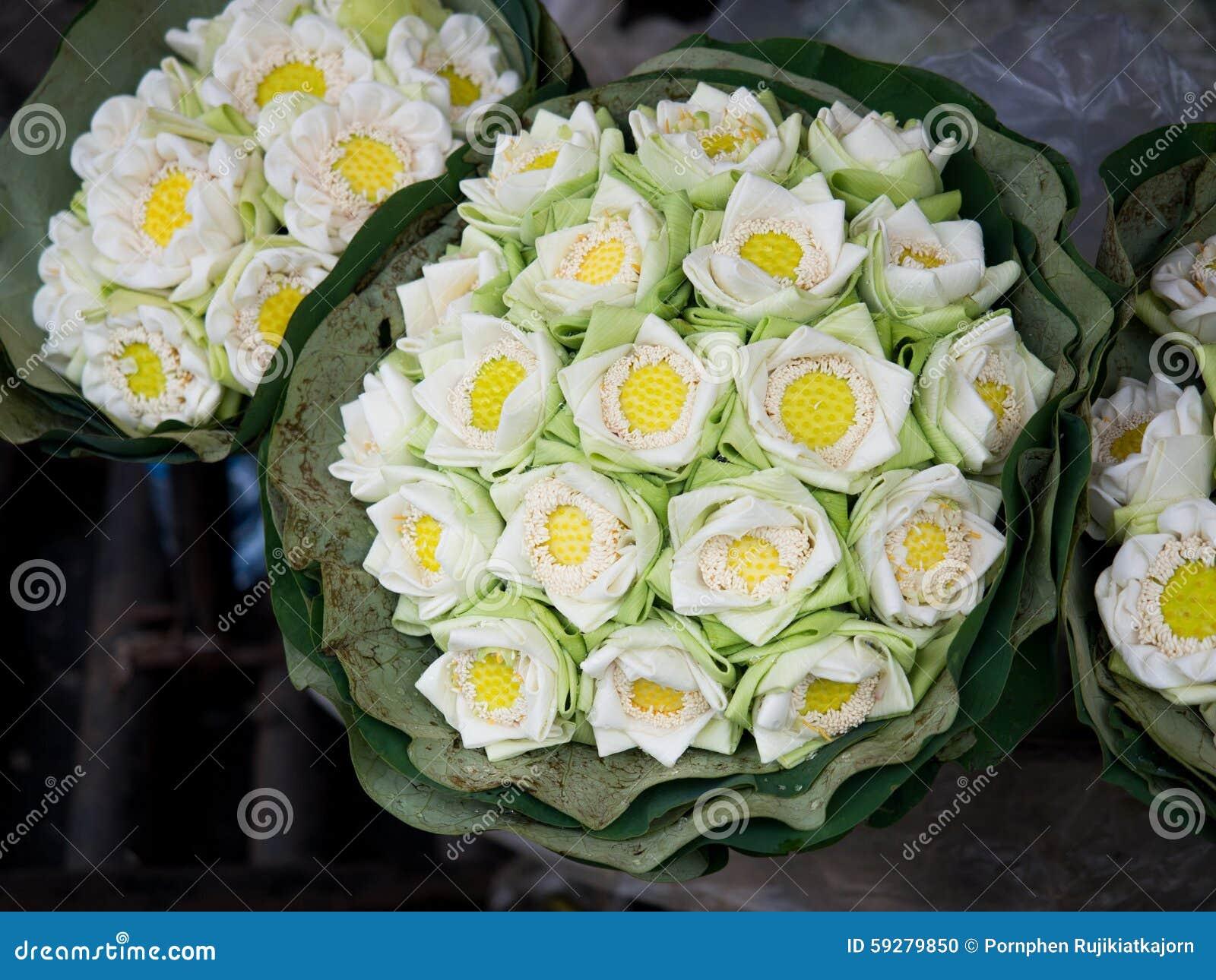 White lotus flower stock photo image of market flower 59279850 white lotus flower izmirmasajfo Image collections