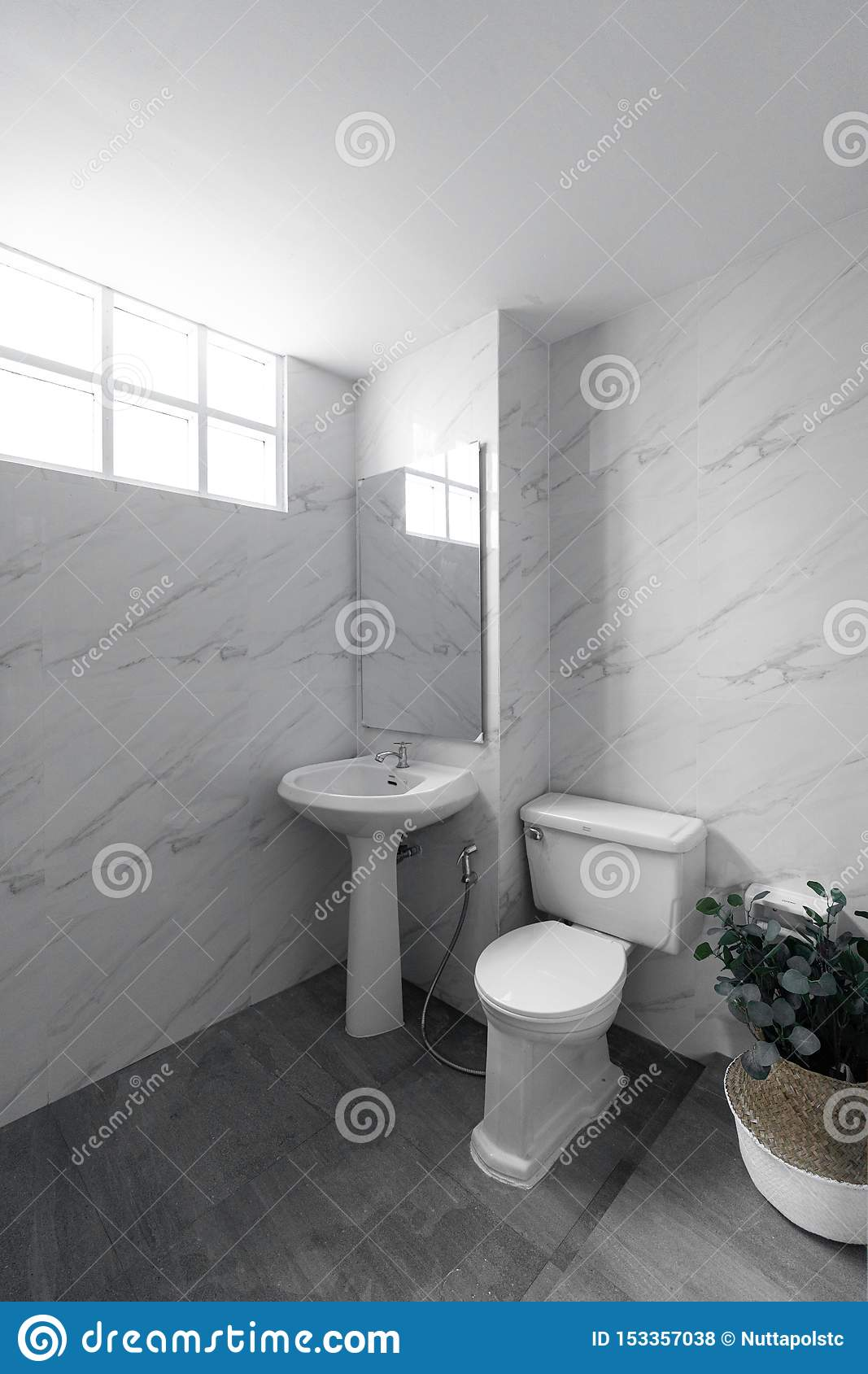 White Marble Tile Wall And Gray Tile Flooring Bathroom In Natural Light Scene Stock Photo Image Of Apartment Horizontal 153357038