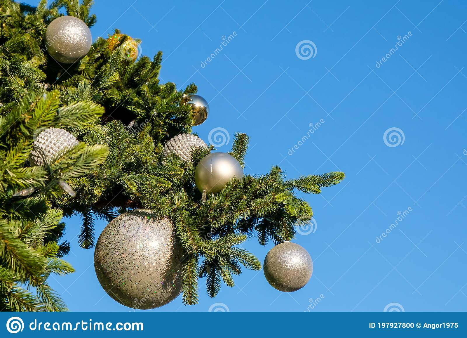 11 426 Christmas Outdoors Summer Photos Free Royalty Free Stock Photos From Dreamstime