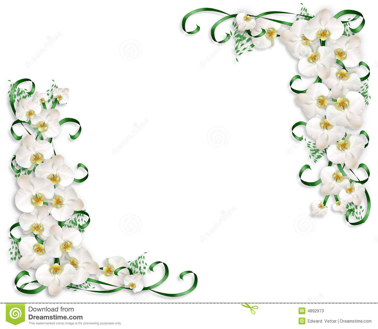 White Orchids Border Wedding Invitation Stock Illustration