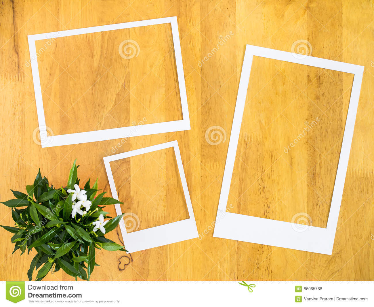 White Paper Frame With Flowerpot On Wood Background Stock Photo
