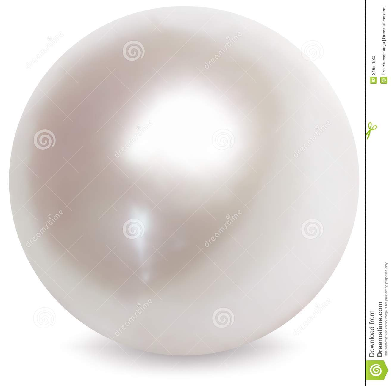 White pearl vector illustration stock vector for White pearl