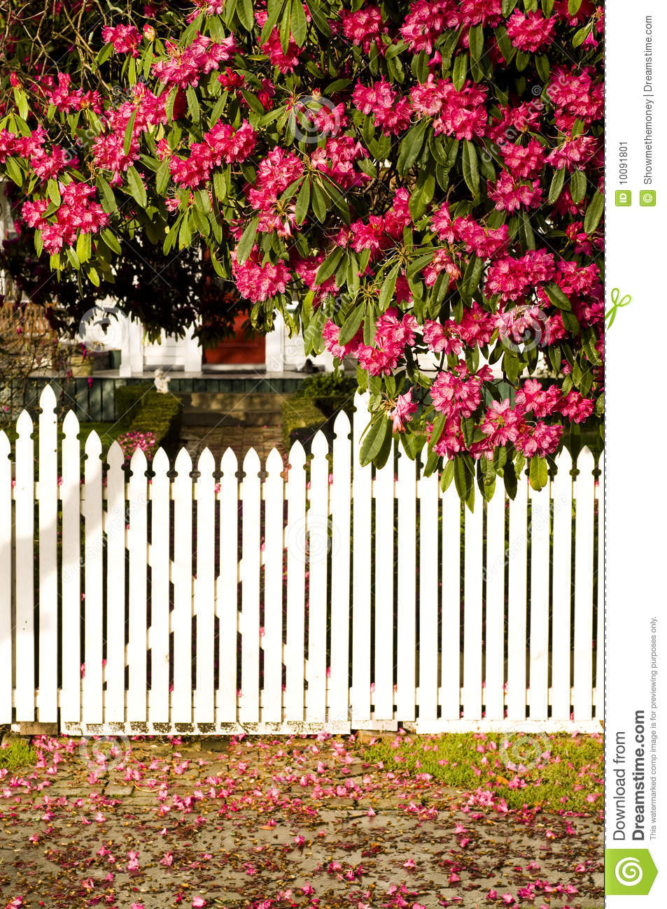White Picket Fence Trendy Stock Images Of Red Wooden