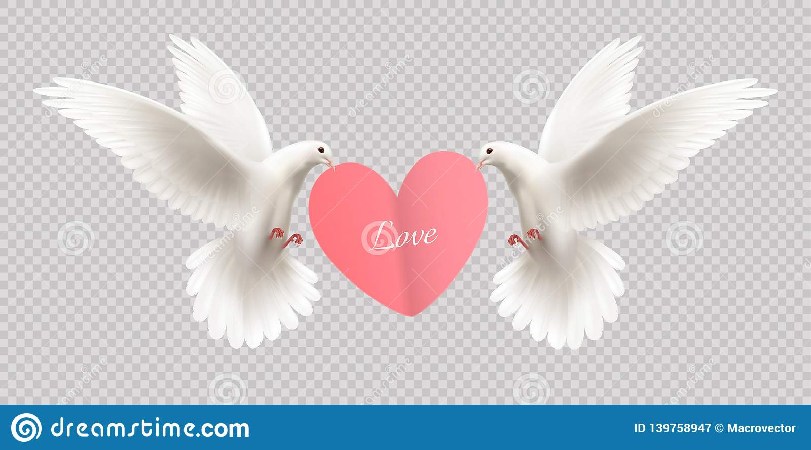 White Pigeons Holding Heart royalty free stock photography