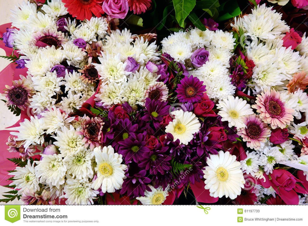 White And Pink Flowers Chrysanthemums And Gerberas Stock Image
