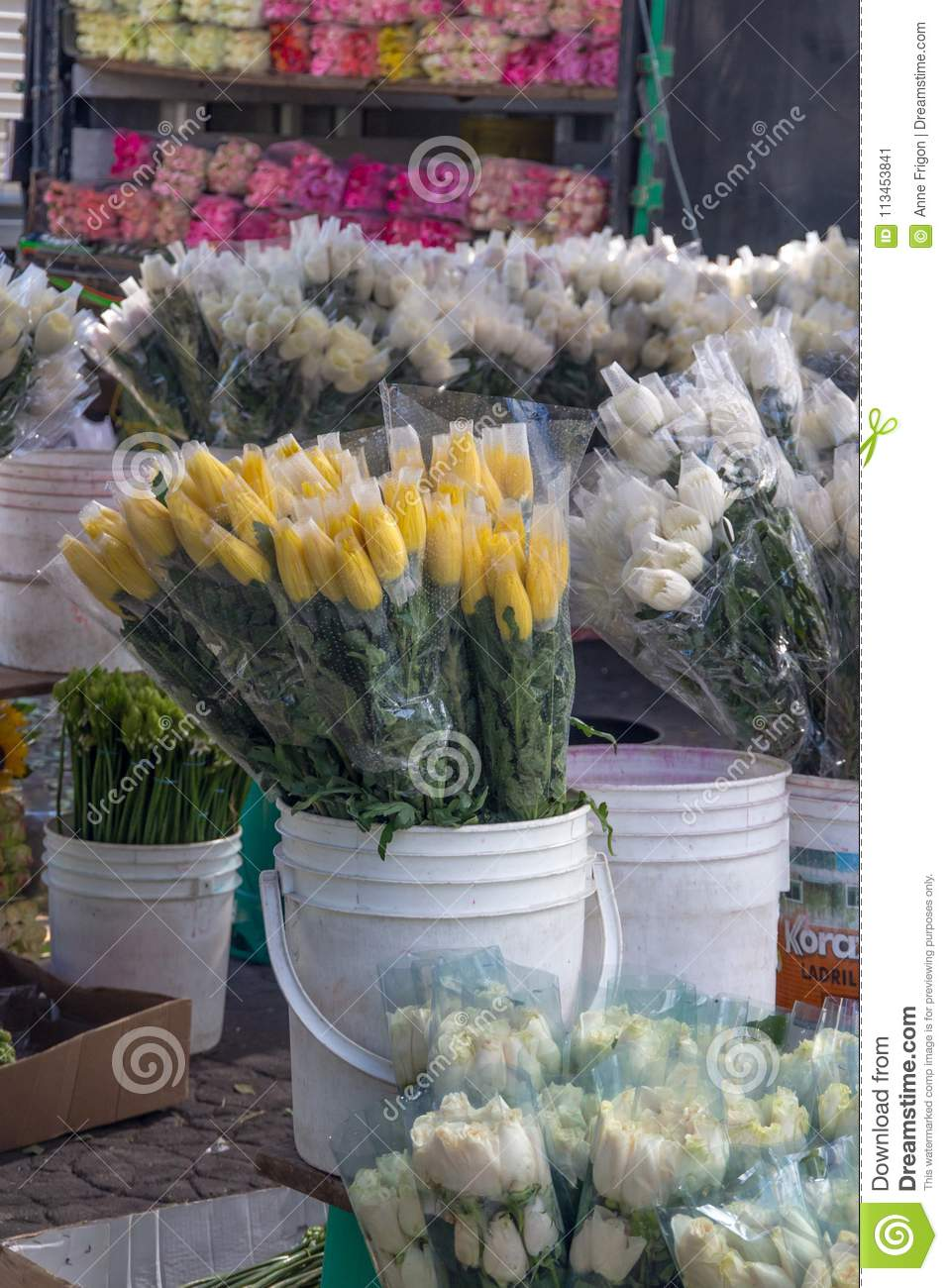 Bucket Of Wrapped Yellow Tulips Surrounded By White Tulips Bogo