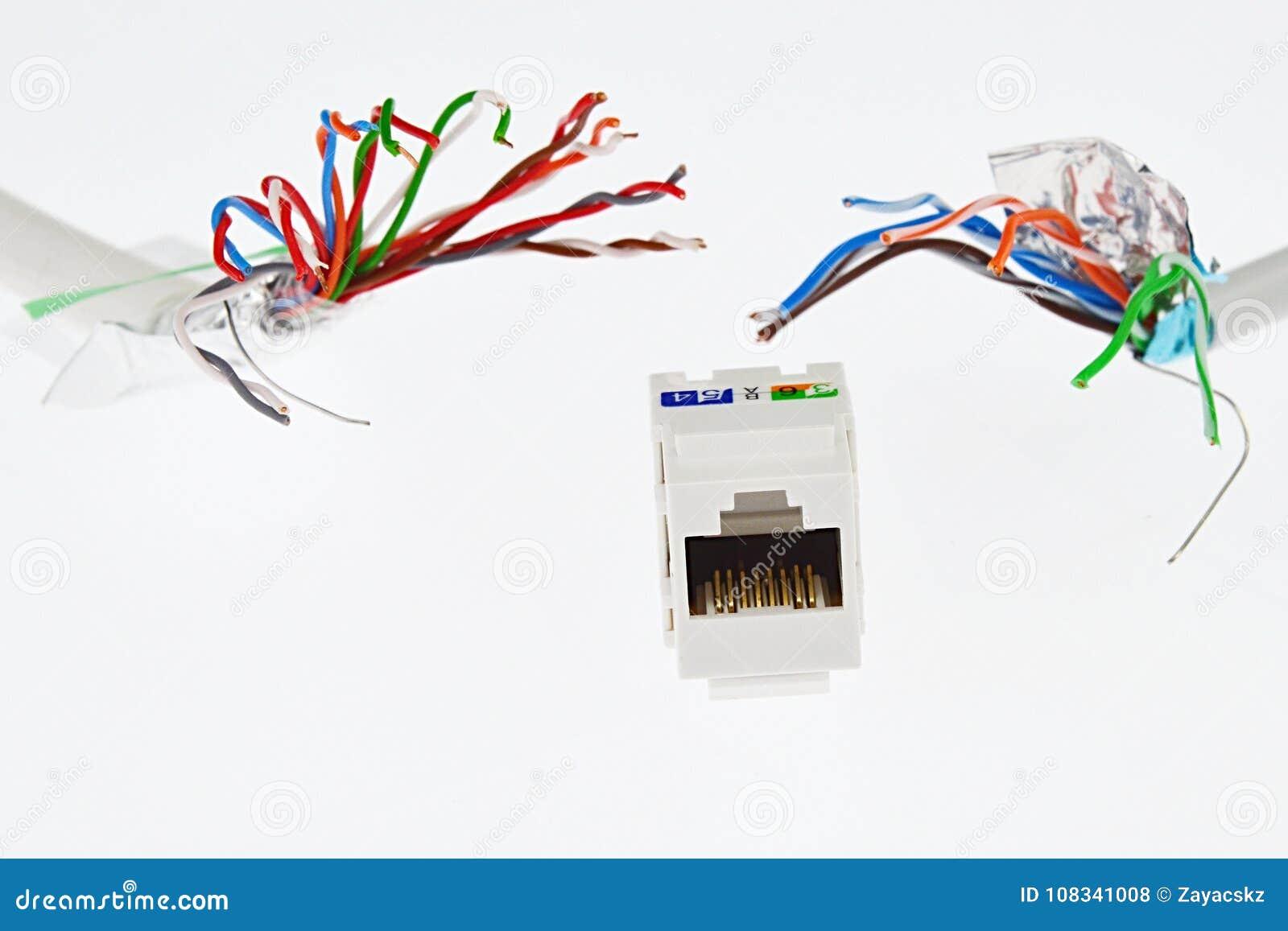 White Plastic Network RJ45 UTP Female Socket Is Chased By Two UTP ...