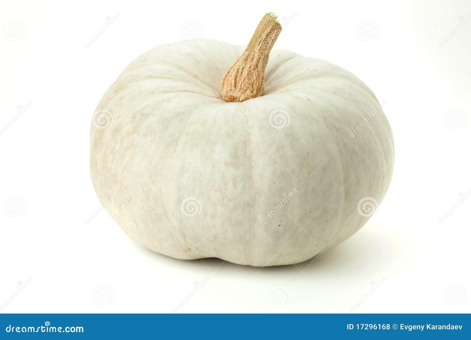 Decorative White Pumpkins