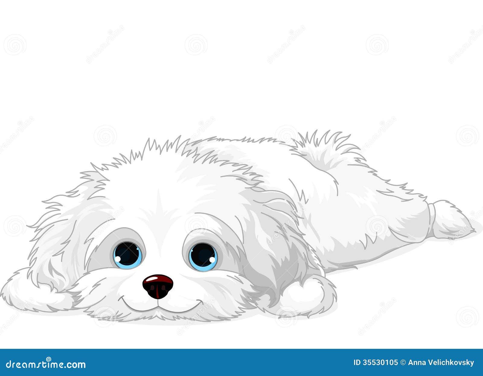 White Puppy Royalty Free Stock Photo Image 35530105
