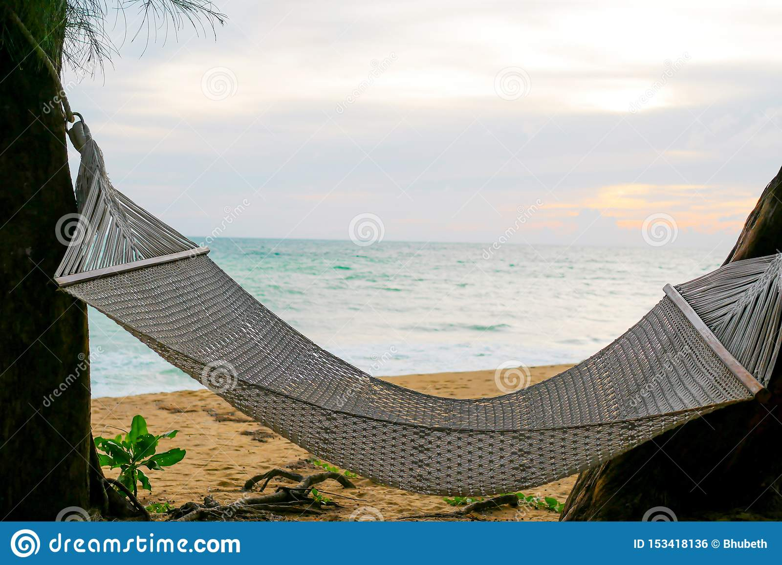White rope crib is hanging between the trees near the beach and sea in the sunset time that representing relaxing and freshness
