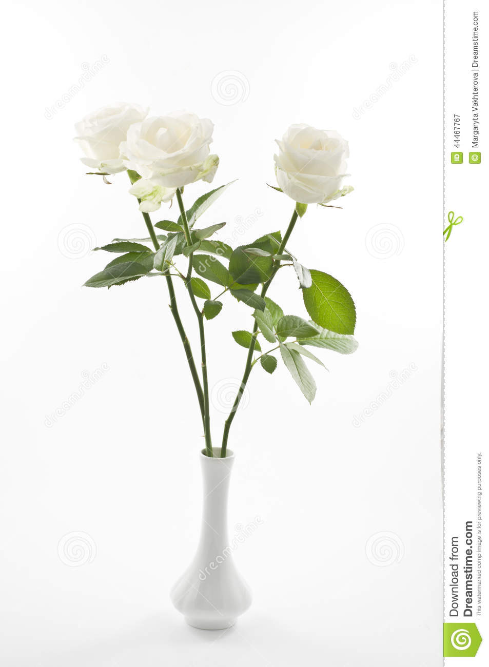 White Rose Flowers In A Vase Over White Stock Image Image Of Rose
